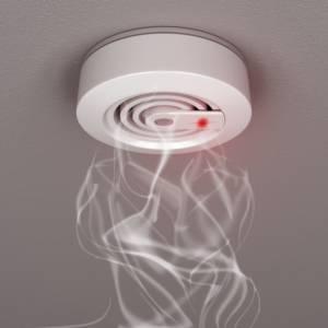 306/17 Požarni alarm